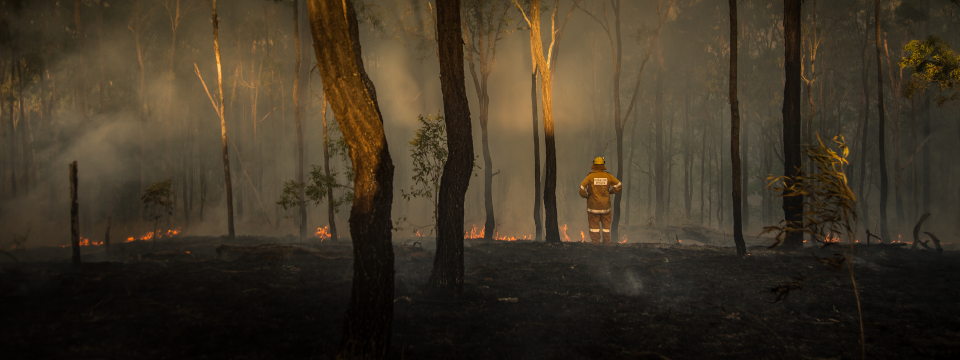 Bushfire Information and Support-01